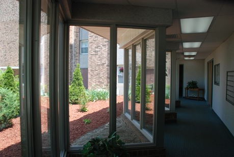 Hallway and windows with large green bushes near windows
