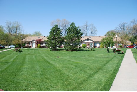 Freshly cut grass and apartments