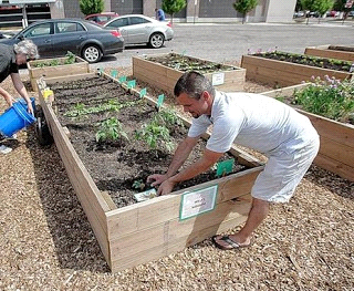 Neighborhood Green Project