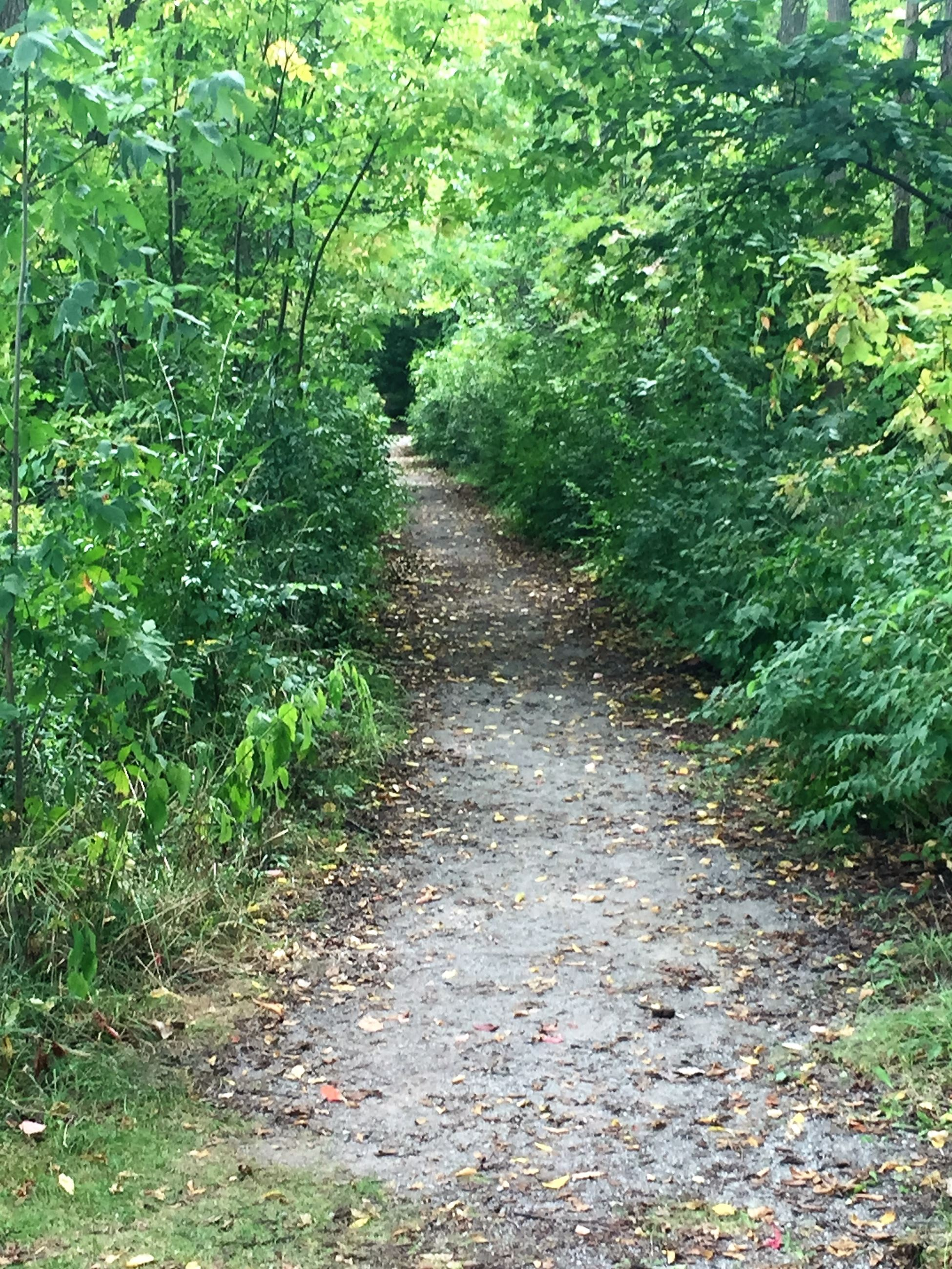 Virginia B. Matley Nature Trail